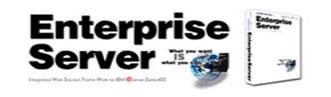 EnterpriseServerバナー